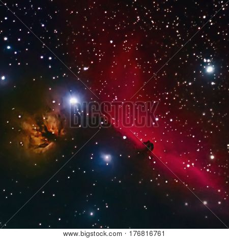 Horsehead And Flaming Tree Nebula In Space