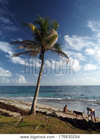 CORN ISLAND NICARAGUA-MARCH 13: A couple with a dog are seen on Sally Peaches beach with palm tree on Big Corn Island Nicaragua Central America on March 13 2017.