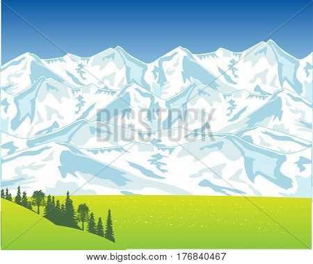 Snow mountains and green glade with flower