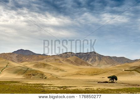 desert scene from Peruvian landscape, South America.