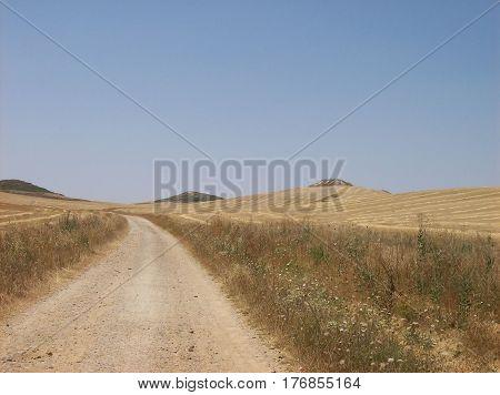 On the road towards santiago de compostela