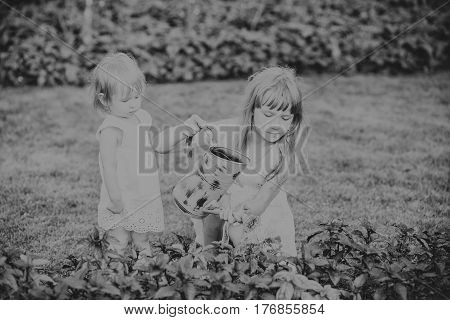 two sisters are some of the beautiful flowers with a watering can and watering the flowers