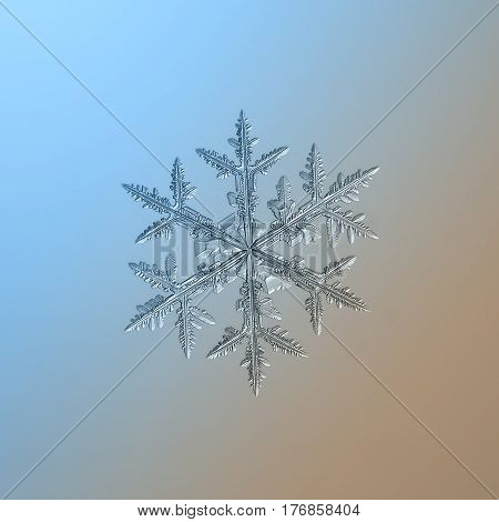 Macro photo of real snowflake: big snow crystal of stellar dendrite type with excellent symmetry of six long arms with side branches and numerous icy