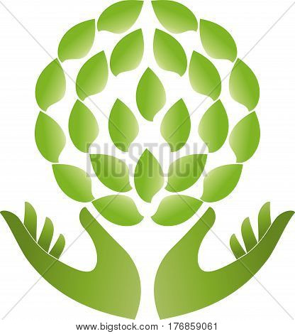 Two hands and leaves, naturopath and nature logo