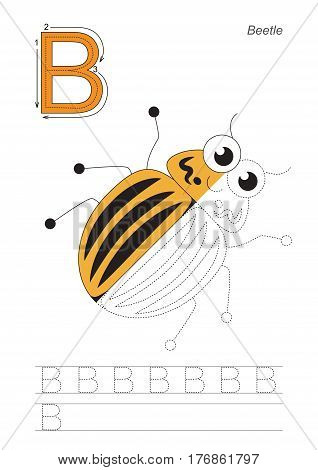 Vector exercise illustrated alphabet, kid gaming and education. Learn handwriting. Half trace game. Easy educational kid game. Tracing worksheet for letter B. Colorado potato beetle.