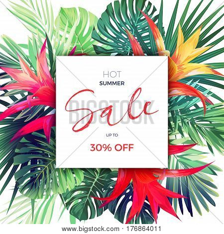 Summer vector floral sale banner. Tropical template design with palm leaves and red guzmania flowers, vector illustration.