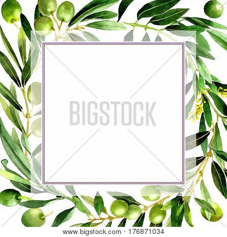Olive tree frame in a watercolor style isolated. Full name of the plant: Branches of an olive tree. Aquarelle olive tree for background, texture, wrapper pattern, frame or border.