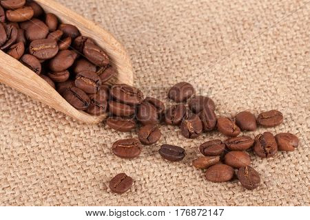 Coffee beans in a wooden scoop on sackcloth.