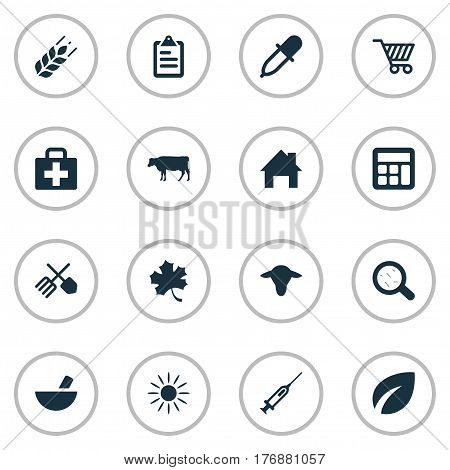 Vector Illustration Set Of Simple Agricultural Icons. Elements Buffalo, Pipette, Medicament And Other Synonyms Medical, Farm And Cart.