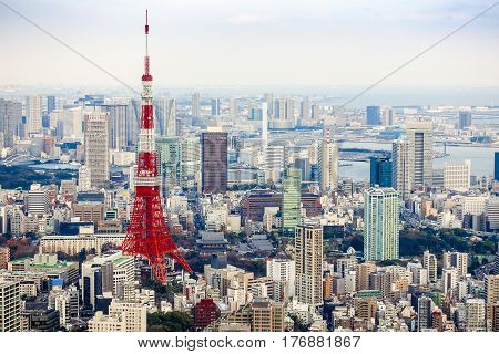 View of Tokyo tower from Roppongi Hill