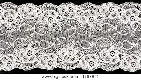 White Lace 1