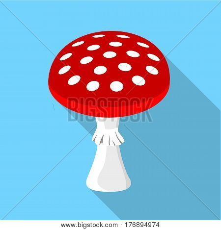 Amanita muscaria, poisonous mushroom icon. Flat illustration of amanita muscaria, poisonous mushroom vector icon for web