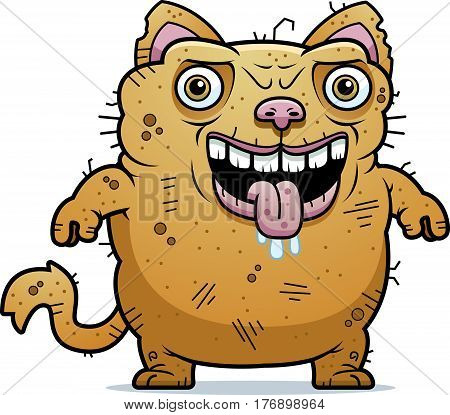 Ugly Cat Standing