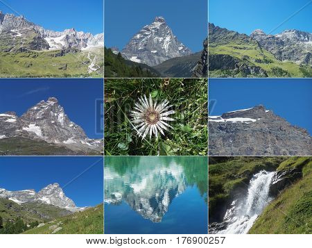 Alps mountains collage with Cervino Matterhorn mountain waterfalls and Edelweiss flower