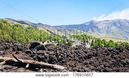 View Of Hardened Lava On Slope Of Etna Volcano