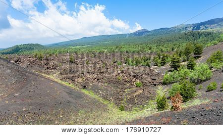 Landscape With Old Craters Of Etna Volcano