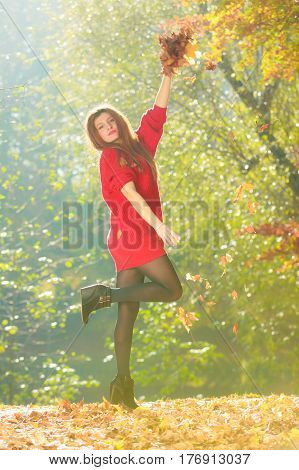 Nature outdoor vegetation joy entertainment relax concept. Lady playing with leaves. Youthful girl tossing around dried foliage having fun in autumnal woodland.