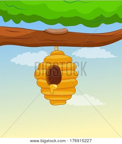 honey bees hive hanging on tree branch