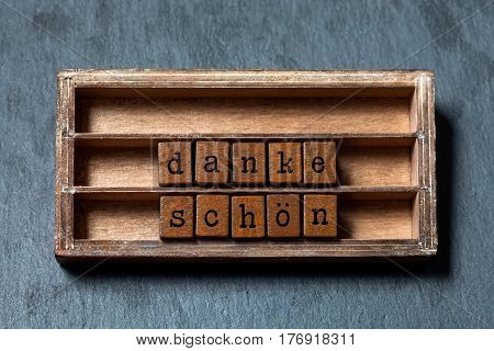 Danke schon Thank you in German translation. Vintage box, wooden cubes thankful phrase message written with old style letters. Gray stone textured background. macro, up view, soft focus