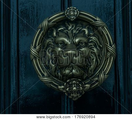 beautiful brass knocker in the shape of a lion's head on a background of the black wooden door decoration close up