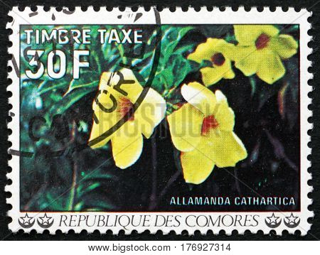 COMOROS - CIRCA 1977: a stamp printed in Comoros shows Golden trumpet allamanda cathartica flowering plant circa 1977