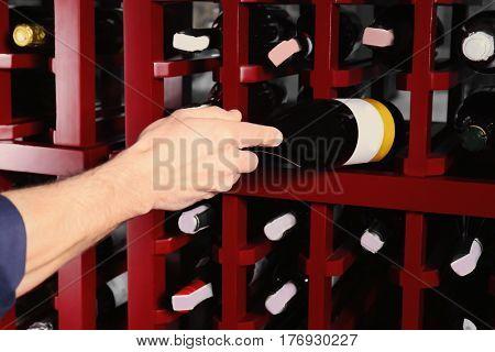 Male sommelier choosing wine in cellar