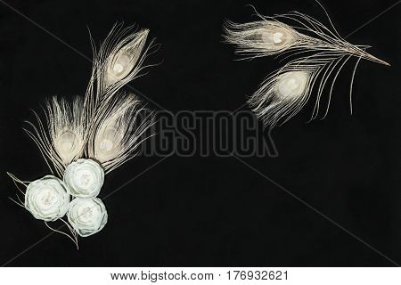 Black Dark Retangular Horizontal Composition With Handmade Gentle White Ranunculus Flowers and Peacock Feathers Lying Flat Top View. Have an Empty Place For Text.