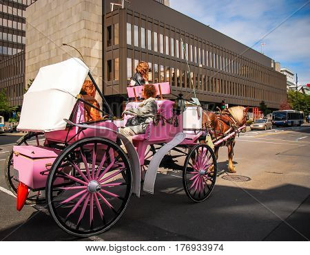 pink carriage in the streets of montreal canada