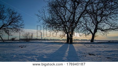 Snow-covered field on the outskirts of the modern city in winter