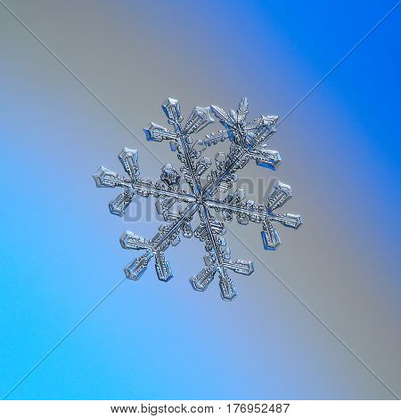 Macro photo of real snowflake: large snow crystal of stellar dendrite type with