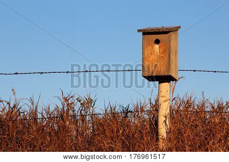 bird box popping out of the tall grass on a fence post