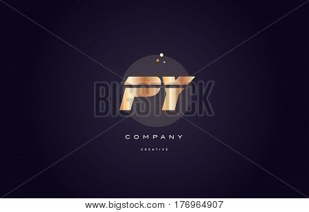 Py P Y  Gold Metal Purple Alphabet Letter Logo Icon Template