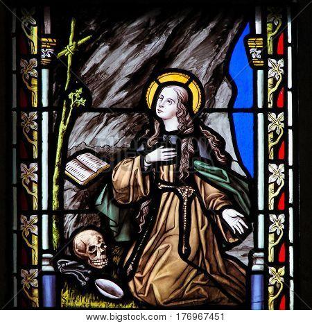 Stained Glass - Saint Rosalia