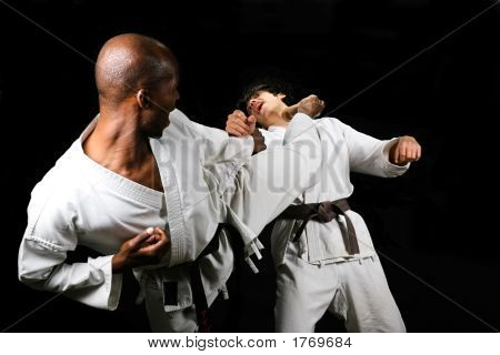 Karate Fight