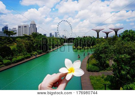 Singapore, Singapore - February 10, 2017: Gardens By the Bay, situated in Marina Bay area in Singapore, it's a new design garden with innovative.