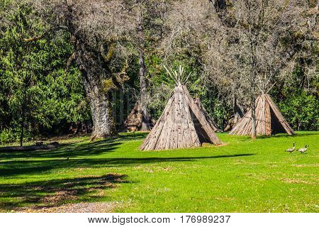 Two American Indian Tepees In Open Field