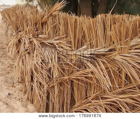 Obstacle from dry palm leaves from sandstorms