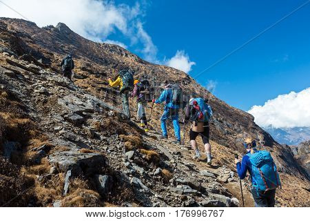 Mixed Group of Athletes mail and female young and mature walking up on steep mountain trail with backpacks and trekking poles
