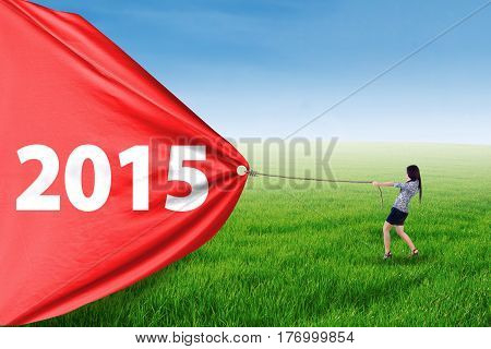 Entrepreneur woman try to drag number 2015 in meadow symbolizing a change in future