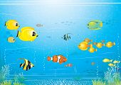 Sea life scene - underwater illustrated vector background with beauty exotic tropical fishes poster