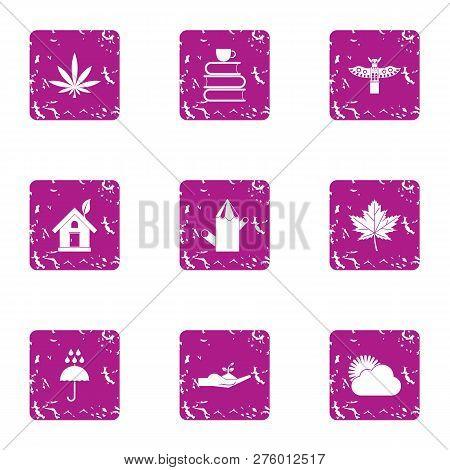Economic knowledge icons set. Grunge set of 9 economic knowledge icons for web isolated on white background poster