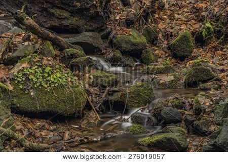 Prucelsky Creek In Winter Cold Cloudy Day In Ceske Stredohori Mountains