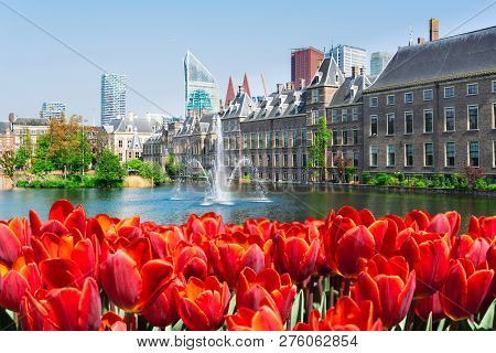 View Of Binnenhof - Dutch Parliament At Spring With Tulip Flowers, The Hague, Holland