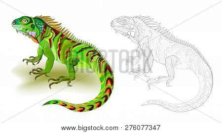 Fantasy Illustration Of Cute Green Lizard Iguana. Colorful And Black And White Page For Coloring Boo