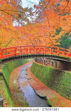 Kitano Tenmangu Shrine Autumn Colorful Foliage Maple Trees