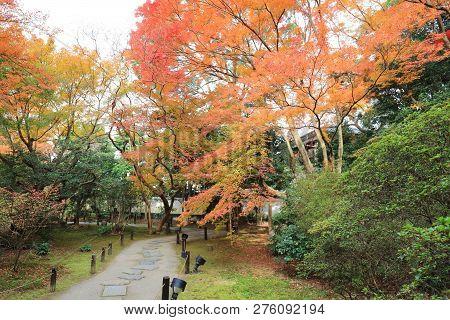 The Garden At Shin Den Shoren In Temple