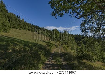 Summer Hot Color Blue Sky Morning In Javorniky Mountains