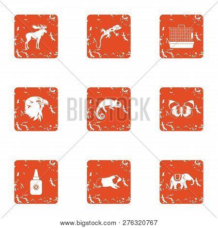 Untamed Icons Set. Grunge Set Of 9 Untamed Icons For Web Isolated On White Background