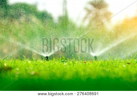 Automatic Lawn Sprinkler Watering Green Grass. Sprinkler With Automatic System. Garden Irrigation Sy