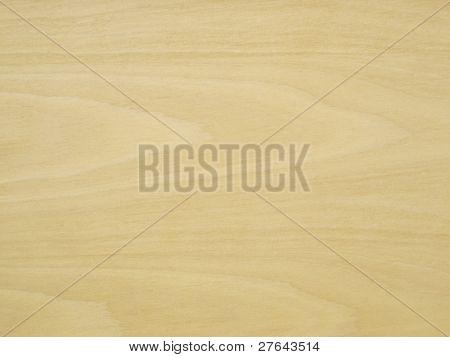 Pale Birchwood Background